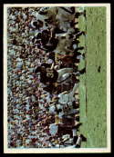 1966 Philadelphia #117 Bill Brown Vikings Play NM Near Mint